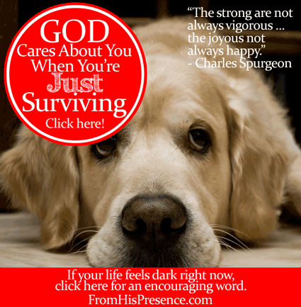 God Cares About You When You're Just Surviving by Jamie Rohrbaugh | FromHisPresence.com Blog