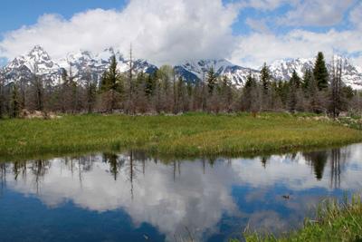 Schwabacher Landing, Grand Teton National Park reflections