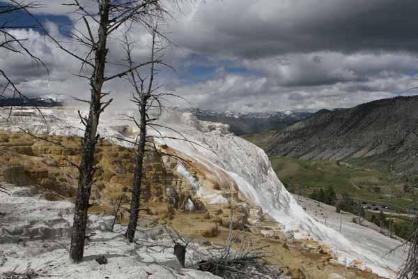 Yellowstone Mammoth 2