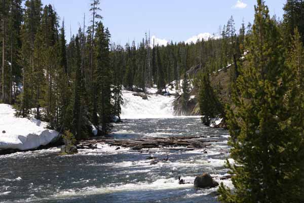 Yellowstone river near Southern entrance