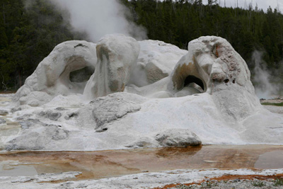 Grotto Geyser, Geyser Basin, Yellowstone National Park