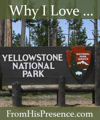 Why I Love Yellowstone National Park