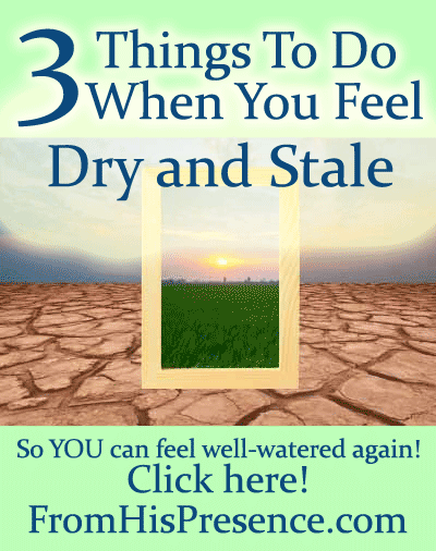 3 Things To Do When You Feel Dry and Stale by Jamie Rohrbaugh | FromHisPresence.com blog