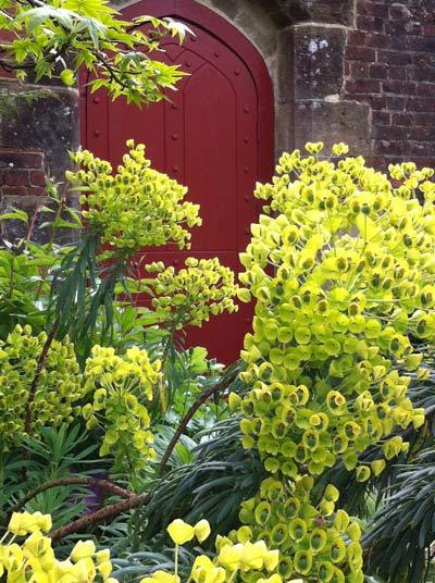 Garden-1-red-door