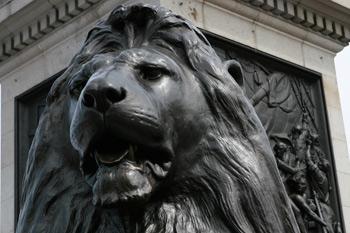 Trafalgar-square-lion