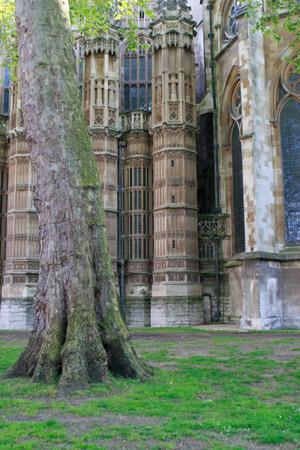 westminster-abbey-side