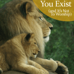 The Real Reason You Exist (and It's Not To Worship)