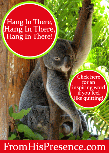 Hang In There, Hang In There, Hang In There! by Jamie Rohrbaugh | FromHisPresence.com Blog