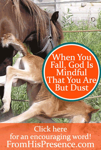 When You Fall, God Is Mindful That You Are But Dust by Jamie Rohrbaugh | FromHisPresence.com Blog