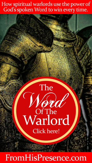 A spiritual warlord knows how to create her own reality using the power of God's spoken word. Read here for more! By Jamie Rohrbaugh   FromHisPresence.com #Warlord series