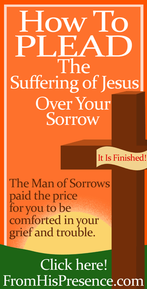 How to plead the suffering of Jesus over your sorrow. Post 2 of 6 in the Suffering of Jesus series. By Jamie Rohrbaugh | FromHisPresence.com