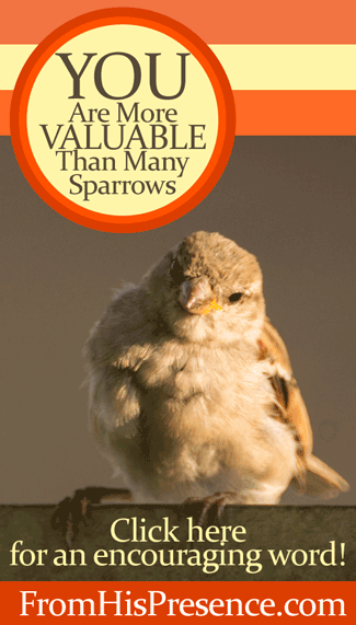 YOU are more valuable than many sparrows! Read this encouraging blog post by Jamie Rohrbaugh | FromHisPresence.com