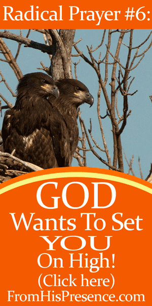 Radical Prayer #6: God Wants To Set You On High from Psalm 91:14. | By Jamie Rohrbaugh | FromHisPresence.com