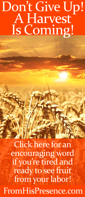 Don't give up! A harvest is coming! Encouraging word from Jamie Rohrbaugh | FromHisPresence.com blog