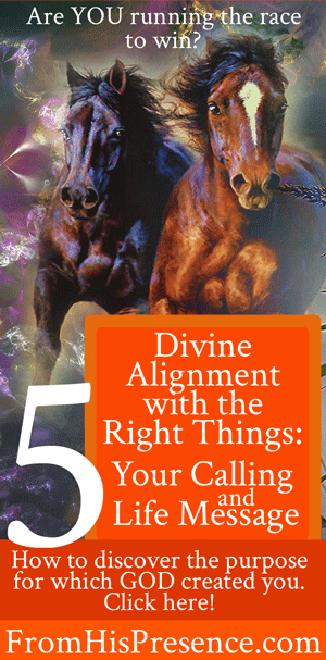 Dimensions-of-Destiny-5-Divine-Alignment-With-the-Right-Things-Calling-and-Life-Message-web