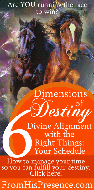 Dimensions-of-Destiny-6-Divine-Alignment-with-the-Right-Things-Part-3-Your-Schedule-web