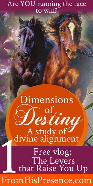 Dimensions of Destiny part 1: The Levers that Raise You Up by Jamie Rohrbaugh | FromHisPresence.com