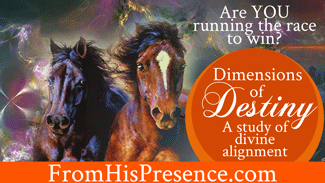 Dimensions-of-Destiny-A-Study-of-Divine-Alignment-by-Jamie-Rohrbaugh