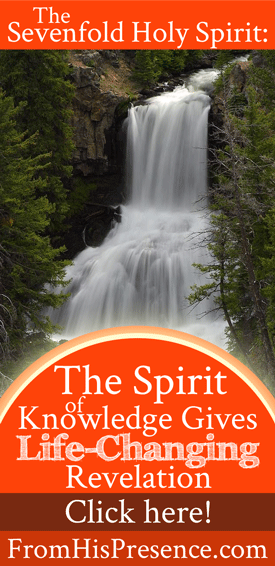 The Sevenfold Holy Spirit: The Spirit of Knowledge Gives Life-Changing Revelation   by Jamie Rohrbaugh   FromHisPresence.com
