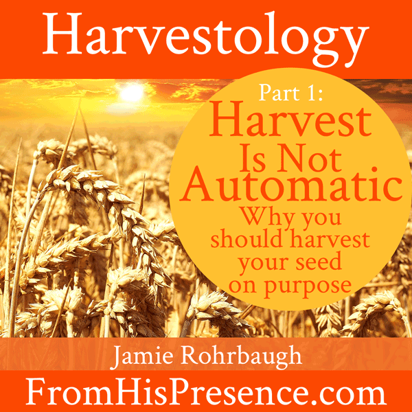 Harvestology 101: Harvest Is Not Automatic | by Jamie Rohrbaugh | FromHisPresence.com