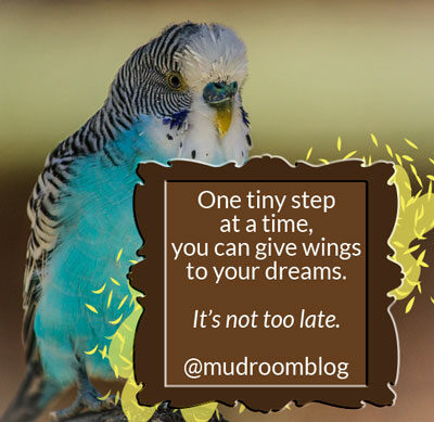 It's Not Too Late For Your Dreams   by Jamie Rohrbaugh