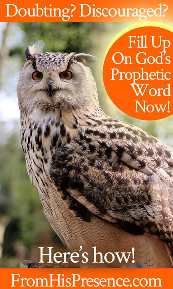 doubting-discouraged-fill-up-on-gods-prophetic-word-now