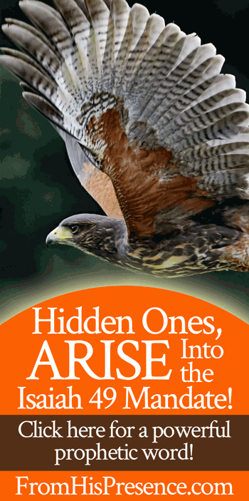 Hidden Ones, Arise Into the Isaiah 49 Mandate! | Prophetic word by Jamie Rohrbaugh | FromHisPresence.com