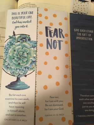 Dayspring Illustrated Faith Craving Connection kit review
