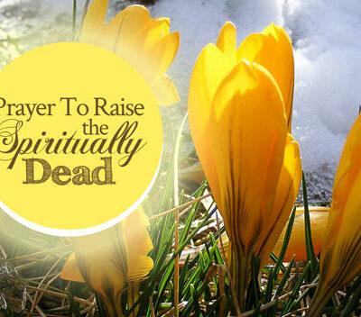 Prayer to Raise the Spiritually Dead   By Jamie Rohrbaugh   FromHisPresence.com