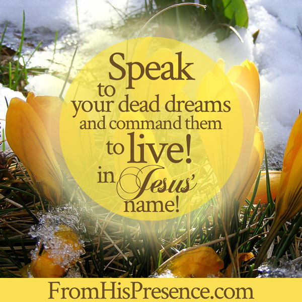 Prayer to raise the spiritually dead | Speak to your dead dreams | Prayer by Jamie Rohrbaugh | FromHisPresence.com