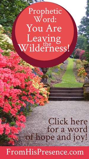 Prophetic Word: You Are Leaving the Wilderness