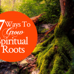 7 Ways To Grow Spiritual Roots | by Jamie Rohrbaugh | FromHisPresence.com