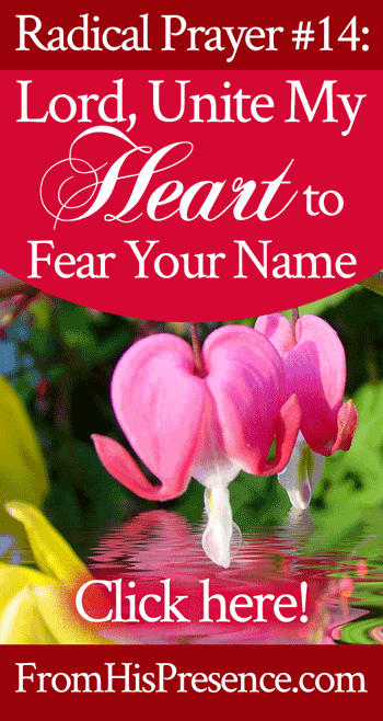 Radical Prayer #14: Lord, Unite My Heart to Fear Your Name | by Jamie Rohrbaugh | FromHisPresence.com