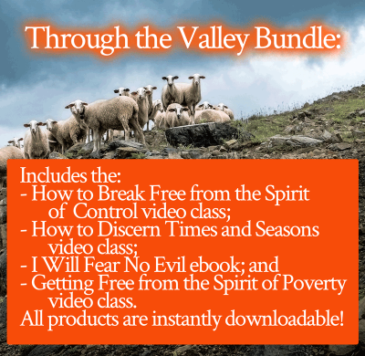 Through the Valley product bundle | FromHisPresence.com