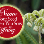 Name Your Seed When You Sow An Offering