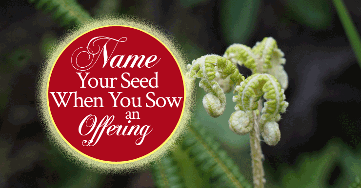 Name Your Seed When You Sow An Offering - From His Presence®