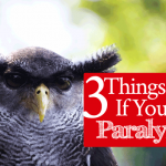 3 Things to Do If You Feel Paralyzed