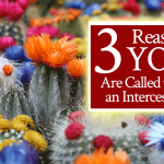 3 Reasons YOU Are Called to Be an Intercessor!
