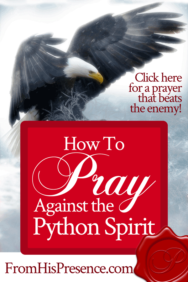 How To Pray Against the Python Spirit - From His Presence®