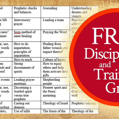 Free Discipleship and Training Grid | by Jamie Rohrbaugh | FromHisPresence.com