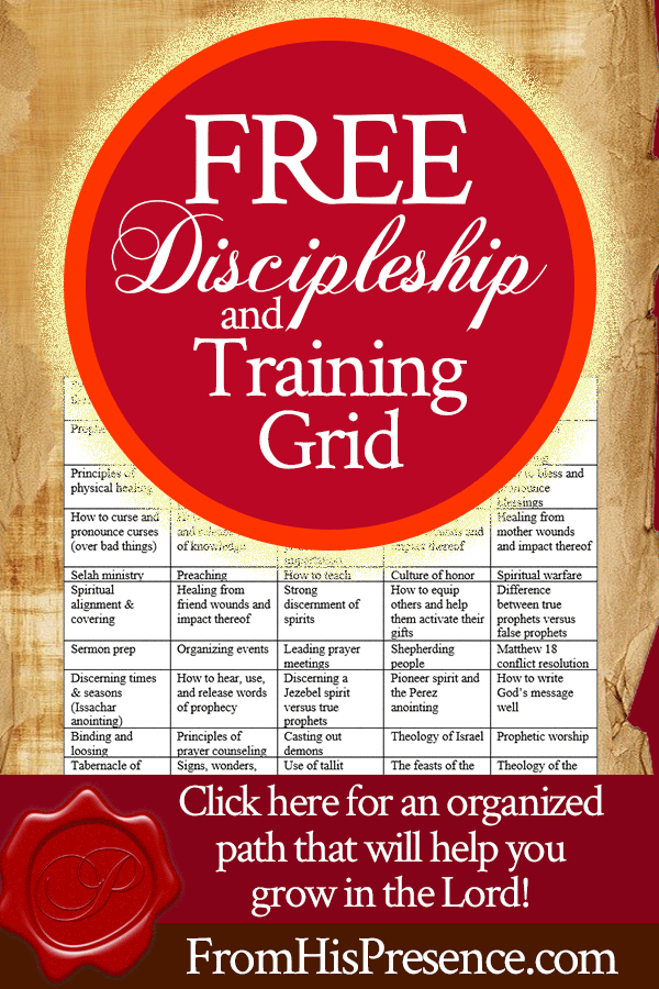 Free Mentoring / Discipleship and Training Grid | by Jamie Rohrbaugh | FromHisPresence.com