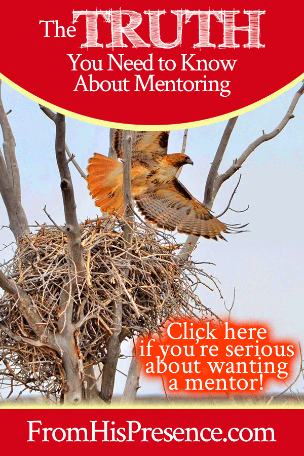 The Truth You Need to Know About Mentoring | FromHisPresence.com | by Jamie Rohrbaugh