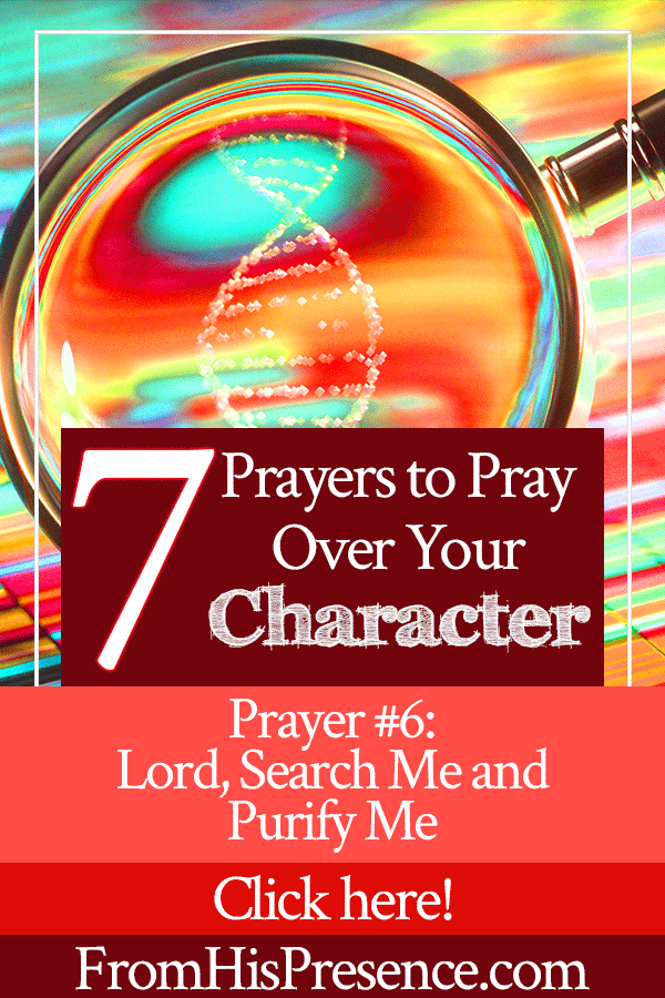 7 Prayers to Pray Over Your Character | Prayer 6 | Lord, Search Me and Purify Me | by Jamie Rohrbaugh | FromHisPresence.com
