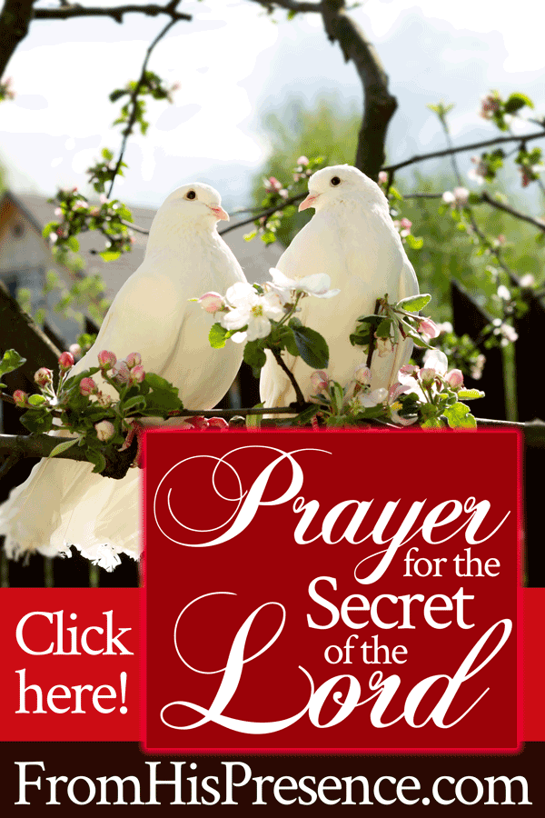 Prayer for the Secret of the Lord | by Jamie Rohrbaugh | FromHisPresence.com