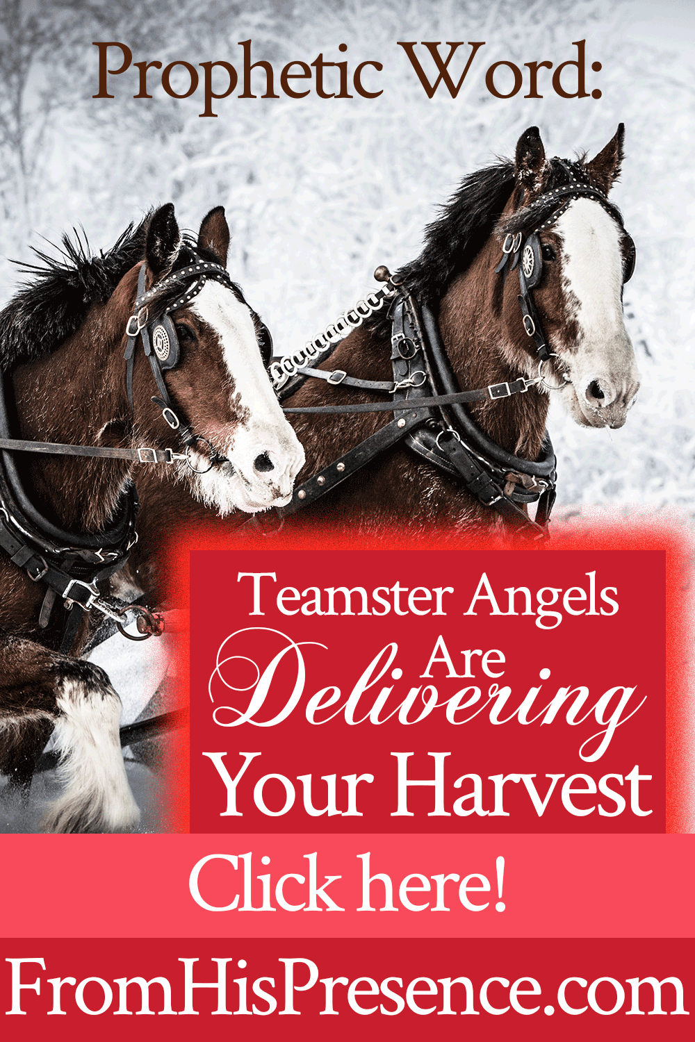 Teamster Angels Are Delivering Your Harvest   Prophetic word by Jamie Rohrbaugh   FromHisPresence.com