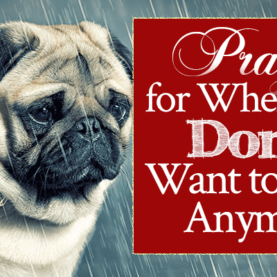 Prayer for When You Don't Want to Live Anymore | by Jamie Rohrbaugh | FromHisPresence.com