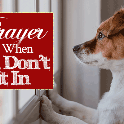 Prayer for When You Don't Fit In | by Jamie Rohrbaugh | FromHisPresence.com