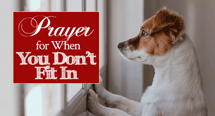 Prayer for When You Don't Fit In   by Jamie Rohrbaugh   FromHisPresence.com