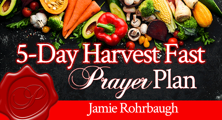 5-Day Harvest Fast Prayer Plan by Jamie Rohrbaugh   Free Bible Plan on YouVersion   FromHisPresence.com
